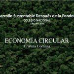 Desarrollo sustentable después de la pandemia